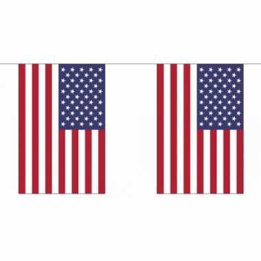 Amerikaanse  Luxe USA vlaggenlijn 9 m kopen