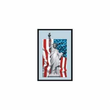 Amerikaanse  Spiegel Vrijheidsbeeld kopen