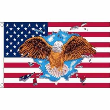 Amerikaanse  USA vlag met adelaar kopen