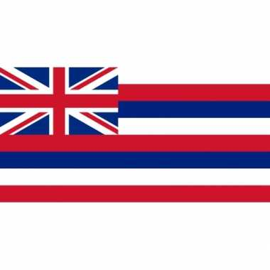 Amerikaanse vlag hawaii 90 x 150 cm kopen