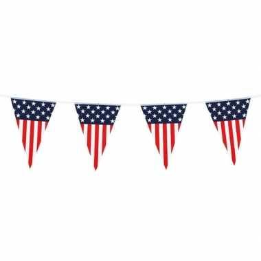 Amerikaanse vlaggenlijn/vlaggetjes amerika/usa 6 meter kopen