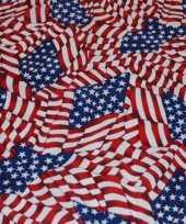 Amerikaanse bandana usa mini vlaggetjes kopen